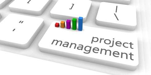 Project Management as a Fast and Easy Website Concept